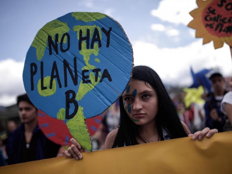 Declaración de Emergencia Climática y Ecológica 4